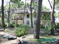 Affitto splendida villa di 6 posti letto immersa nel verde
